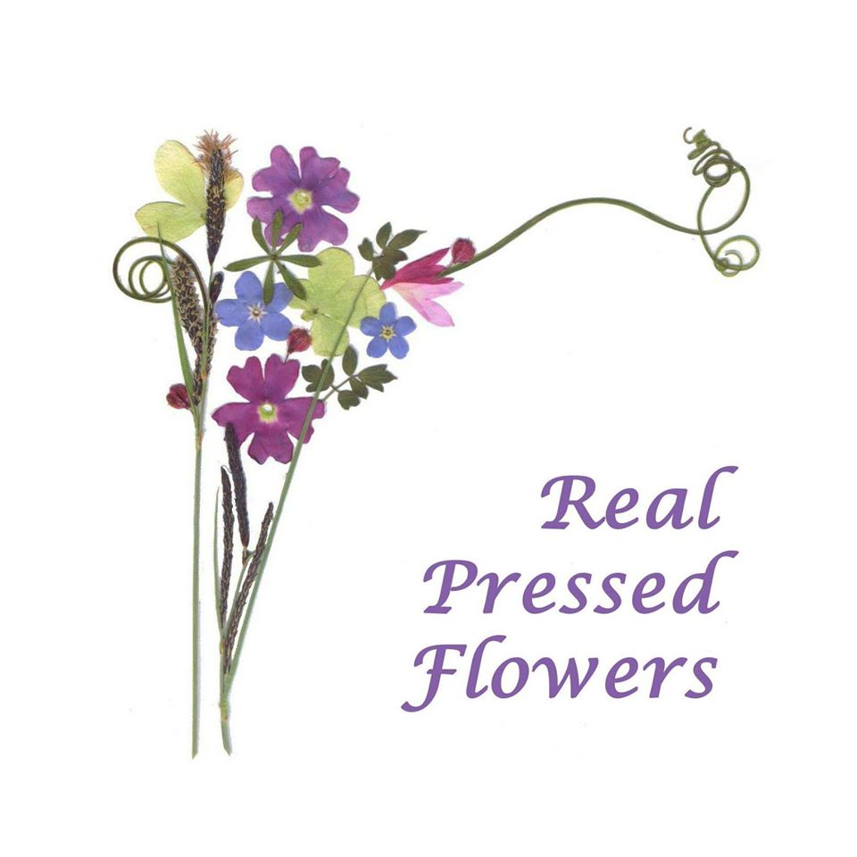 real pressed flowers - Glass-tonbury Festival